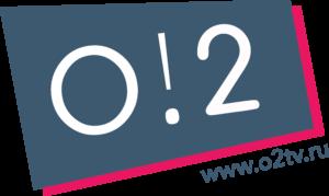 logo_site()